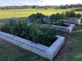 Action For Healthy Kids/Adair County 4-H Garden